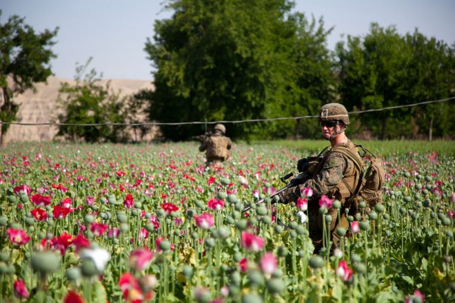 https://llco.org/wp-content/uploads/2019/03/US-troops-guarding-poppies-660x440.jpg